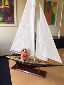 Herr Erdmann segelt